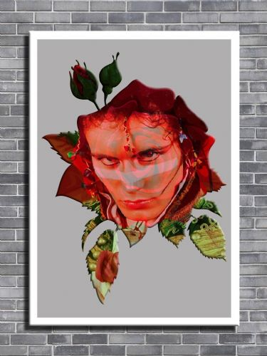 ADAM ANT - RED ROSE FADE canvas print - self adhesive poster - photo print
